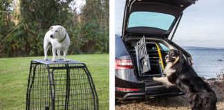 Bästa hundbur till bilen - Artfex eller Mim Variocage
